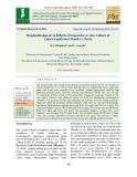 Standardization of an effective protocol for in vitro culture of Lilium longiflorum Thunb cv. Pavia