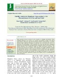 Stability analysis in mungbean (Vigna radiata L.) for micronutrients (Fe & Zn) and seed yield