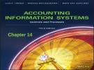 Lecture Accounting information systems: Controls and processes (3rd Edition): Chapter 14 - Turner, Weickgenannt, Copeland