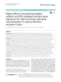 Highly efficient mesophyll protoplast isolation and PEG-mediated transient gene expression for rapid and large-scale gene characterization in cassava (Manihot esculenta Crantz)