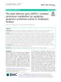 The plant defensin gene AtPDF2.1 mediates ammonium metabolism by regulating glutamine synthetase activity in Arabidopsis thaliana