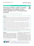 Proteasome inhibition rapidly exacerbates photoinhibition and impedes recovery during high light stress in Chlamydomonas reinhardtii