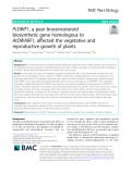 PcDWF1, a pear brassinosteroid biosynthetic gene homologous to AtDWARF1, affected the vegetative and reproductive growth of plants