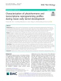 Characterization of phytohormone and transcriptome reprogramming profiles during maize early kernel development