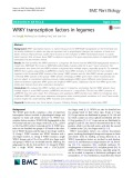 WRKY transcription factors in legumes