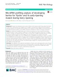MicroRNA profiling analysis of developing berries for 'Kyoho' and its early-ripening mutant during berry ripening