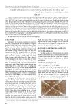 Nghiên cứu khả năng nhân giống hương nhu tía bằng hạt