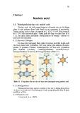 Bài giảng môn Hóa sinh - Chương 4: Nucleic acid