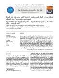 Đánh giá khả năng xử lý nước ô nhiễm chất dinh dưỡng bằng cây cỏ Sậy (Phragmites australis)