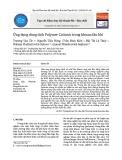 Ứng dụng dung dịch Polymer Cationic trong khoan dầu khí