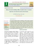 Study on general combining ability in upland cotton (G. hirsutum)