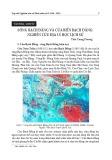 Sông Bạch Đằng và cửa biển Bạch Đằng: Nghiên cứu Địa lý học lịch sử