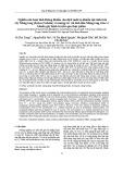 Nghiên cứu hoạt tính kháng khuẩn của dịch nuôi xạ khuẩn nội sinh trên cây Màng tang (Listea Cubeba) và tương tác với tinh dầu Màng tang trên vi khuẩn gây bệnh truyền qua thực phẩm