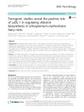 Transgenic studies reveal the positive role of LeEIL-1 in regulating shikonin biosynthesis in Lithospermum erythrorhizon hairy roots