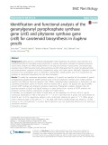 Identification and functional analysis of the geranylgeranyl pyrophosphate synthase gene (crtE) and phytoene synthase gene (crtB) for carotenoid biosynthesis in Euglena gracilis