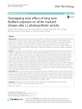 Overlapping toxic effect of long term thallium exposure on white mustard (Sinapis alba L.) photosynthetic activity