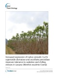 Increased expression of native cytosolic Cu/Zn superoxide dismutase and ascorbate peroxidase improves tolerance to oxidative and chilling stresses in cassava (Manihot esculenta Crantz)
