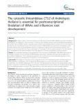 The cytosolic thiouridylase CTU2 of Arabidopsis thaliana is essential for posttranscriptional thiolation of tRNAs and influences root development