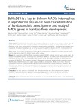 BeMADS1 is a key to delivery MADSs into nucleus in reproductive tissues-De novo characterization of Bambusa edulis transcriptome and study of MADS genes in bamboo floral development