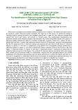 Định danh loài Alternaria sesami gây bệnh đốm nâu chanh leo tại Nghệ An
