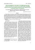 Bước đầu nghiên cứu tác dụng ức chế nấm Sclerotium rolfsii của dịch chiết một số cây dược liệu trong phòng thí nghiệm