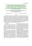 Nghiên cứu biến đổi khí hậu tác động đến sự sinh sản và phát triển của rầy nâu Nilaparvata lugens Stal