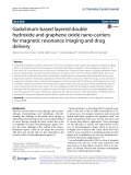 Gadolinium-based layered double hydroxide and graphene oxide nano-carriers for magnetic resonance imaging and drug delivery