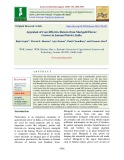 Appraisal of cost-effective return from marigold flower grower in Jammu district, India