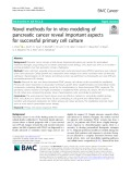 Novel methods for in vitro modeling of pancreatic cancer reveal important aspects for successful primary cell culture