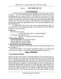Sáng kiến kinh nghiệm: Khai thác các ứng dụng từ một bài toán lớp 8