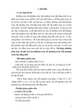 Sáng kiến kinh nghiệm: Sử dụng phương pháp hàm số giải bài toán phương trình, hệ phương trình, bất phương trình, bất đẳng thức