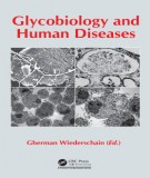 Glycobiology and human diseases: Part 1