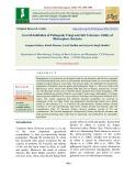 Growth inhibition of pathogenic fungi and salt tolerance ability of rhizosphere bacteria