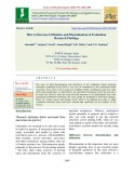 How to increase utilization and dissemination of evaluation research findings