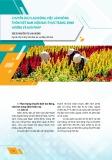 Chuyển dịch lao động, việc làm nông thôn việt nam hiện nay: Thực trạng, định hướng và giải pháp