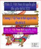 Bài giảng Lịch sử lớp 10 - Bài 13: Việt Nam thời nguyên thủy