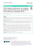 CHD4 mediates proliferation and migration of non-small cell lung cancer via the RhoA/ ROCK pathway by regulating PHF5A