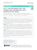 CD171- and GD2-specific CAR-T cells potently target retinoblastoma cells in preclinical in vitro testing