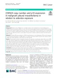 CDKN2A copy number and p16 expression in malignant pleural mesothelioma in relation to asbestos exposure