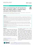 Fibrin-associated large B-cell lymphoma: First case report within a cerebral artery aneurysm and literature review