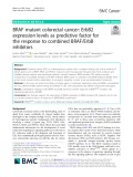 BRAF mutant colorectal cancer: ErbB2 expression levels as predictive factor for the response to combined BRAF/ErbB inhibitors