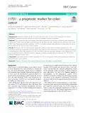 L1TD1 - a prognostic marker for colon cancer