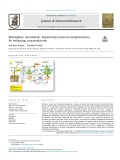 Rhizosphere microbiome: Engineering bacterial competitiveness for enhancing crop production