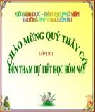 Bài giảng Lịch sử lớp 12 – Bài 13: Phong trào dân tộc dân chủ ở Việt Nam từ năm 1925 đến năm 1930