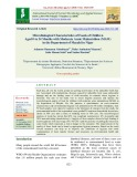 Microbiological characteristics of foods of children aged 0 to 24 months with moderate acute malnutrition (MAM) in the department of Mayahi in Niger