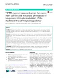 TRPM7 overexpression enhances the cancer stem cell-like and metastatic phenotypes of lung cancer through modulation of the Hsp90α/uPA/MMP2 signaling pathway