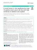 A novel human in vitro papillomavirus type 16 positive tonsil cancer cell line with high sensitivity to radiation and cisplatin
