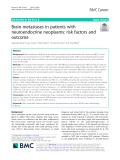 Brain metastases in patients with neuroendocrine neoplasms: Risk factors and outcome