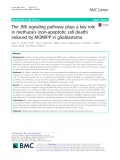 The JNK signaling pathway plays a key role in methuosis (non-apoptotic cell death) induced by MOMIPP in glioblastoma