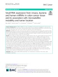 Small RNA expression from viruses, bacteria and human miRNAs in colon cancer tissue and its association with microsatellite instability and tumor location
